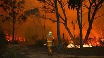 Video: Cháy rừng tại Úc gây nguy hiểm chưa từng có, đe dọa Sydney