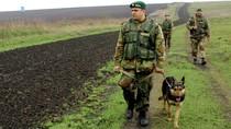 Ukraine tuyên bố bắt được sĩ quan Nga tại Donetsk cùng xe tải đạn dược