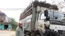 """Vụ Công an """"liều chết"""" chặn xe chở mía: Bồi thường 25 triệu đồng"""