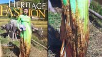 Vietnam Airlines thu hồi tạp chí vì in hình chùa thiêng Myanmar lên áo dài