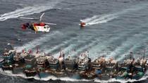 """Hội nghề cá Việt Nam phản đối """"lệnh cấm đánh bắt cá"""" của Trung Quốc"""