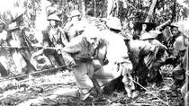 Nghệ thuật sử dụng pháo binh trong Chiến dịch Điện Biên Phủ
