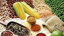 12 thực phẩm hàng đầu chống lại bệnh tật có trong bếp nhà bạn