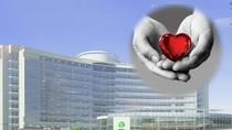 Bệnh viện miễn phí và cái tầm của lãnh đạo