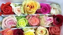 """Hoa hồng ngoại """"náo loạn"""" thị trường trước Lễ Tình nhân"""