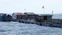 Bè cá có người Trung Quốc ở Cam Ranh sẽ bị phạt 4 triệu đồng