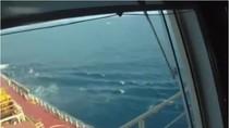 Video: Cách tàu thương mại đối phó với cướp biển