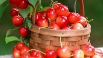 Giảm đau cực kỳ hiệu quả với thực phẩm tự nhiên