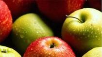 Những thực phẩm ngừa ung thư phổi