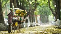 Chùm ảnh: Vẻ đẹp lãng mạn của mùa thu Hà Nội