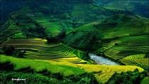 Góc ảnh: Mê mẩn ngắm cảnh đẹp ruộng bậc thang vùng cao (P2)