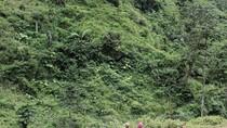 Nóng bỏng ma túy và cạm bẫy buôn bán nữ sinh ở vùng biên xứ Nghệ