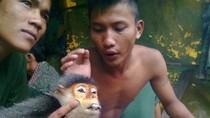 """GS Võ Quý: """"Hình ảnh con khỉ mang thai bị giết vẫn luôn ám ảnh tôi"""""""