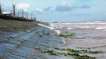 Chùm ảnh: Kinh hoàng rác thải tại bãi biển Quất Lâm