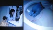 GS Nguyễn Lân Dũng: Quảng cáo nước tẩy rửa Vim thiếu tính khoa học