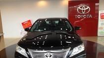 """PGS-TS Ngô Trí Long: """"Toyota Việt Nam đang đứng ở ngã ba đường"""""""