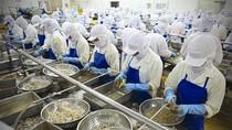 Úc ngừng nhập khẩu tôm sống sẽ gây ảnh hưởng lớn tới Việt Nam