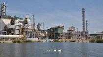 """Chuyện về """"thanh tra môi trường"""" ở hồ nước thải Nhà máy Lọc dầu Dung Quất."""