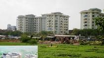 Lotus Hotel: Dự án KS lớn nhất thủ đô thành bãi trồng rau muống
