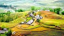 Tiếng Việt trong thế giới toàn cầu