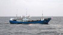 Trung Quốc có tới 316.100 tàu đánh bắt cá trên biển