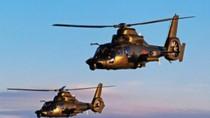 TQ sắp biên chế 2 loại trực thăng mới, khả năng chiếm đảo đá tăng lên