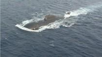 Trung Quốc bán 8 tàu ngầm cho Pakistan khiến Ấn Độ bị khủng hoảng?