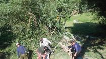 Nghệ An: Xe khách lao xuống vực, 16 người thương vong
