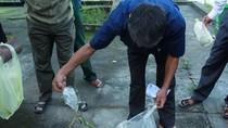 Chỉ 1 ngày, người dân bắt được 18 con rắn lục đuôi đỏ