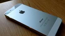 Màn hình của iPhone 5 dính lỗi nghiêm trọng