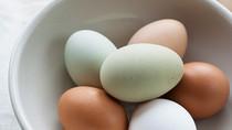 Cho con ăn trứng như thế nào là đúng cách?