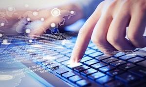 Chân thực thông tin trên mạng và quyền con người