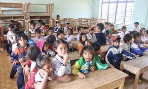 Còn khoảng 21% người dân tộc thiểu số trên 15 tuổi chưa thạo tiếng Việt