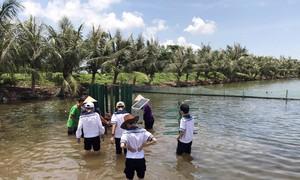 Học sinh Hải Phòng sáng tạo máy khuấy, đảo khí cho đầm nuôi thủy sản