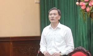 Hà Nội nêu lý do chậm công bố kết luận vi phạm đất rừng Sóc Sơn