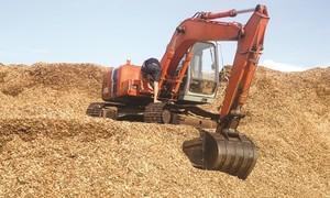 Làm sao ngành gỗ Việt Nam tránh được thiệt hại bởi Trung Quốc?