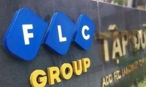 """Định giá FLC 9 tỷ USD có phải là chiêu trò """"thổi giá""""?"""