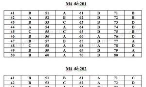 Gợi ý đáp án 24 mã đề môn Hóa học trong kỳ thi quốc gia