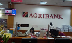 Phó Tổng giám đốc Agribank dựa vào đâu để ký hợp đồng làm phim?