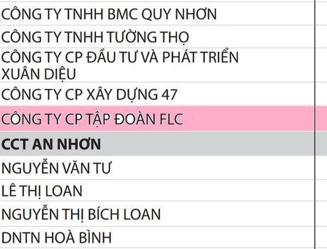 Tập đoàn FLC đứng đầu các doanh nghiệp nợ thuế ở Bình Định
