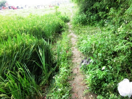 http://img.giaoduc.net.vn/w500/Uploaded/thuhien/2012_05_22/20120522-160756-1-anh-2-8d4a2.JPG.jpeg